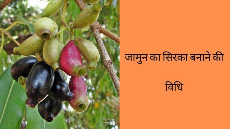 jamun sirka recipe in hindi