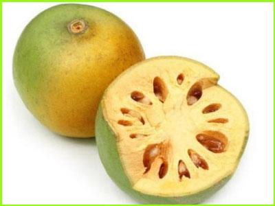 bel wood apple fruit name in sanskrit