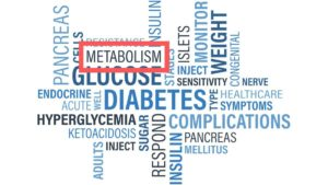 What is metabolism in hindi