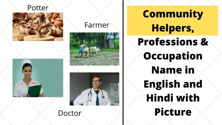 community helpers names in hindi and english with picture